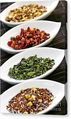 Assorted Herbal Wellness Dry Tea In Bowls Canvas Print by Elena Elisseeva