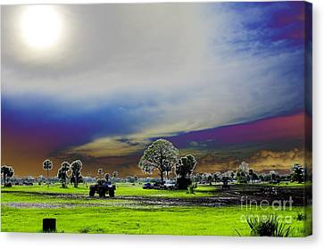 At The Mudjam Canvas Print by Don Youngclaus