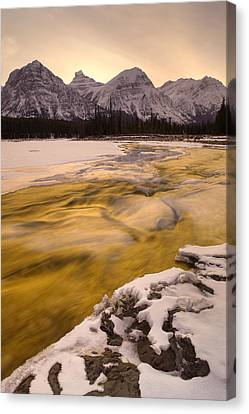 Athabasca River And Mt Fryatt, Jasper Canvas Print by Darwin Wiggett