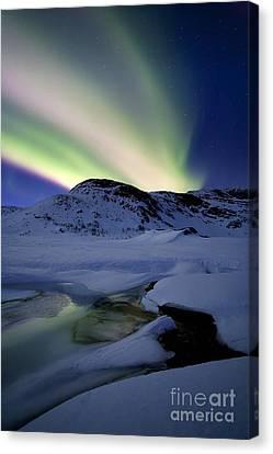 Aurora Borealis Over Mikkelfjellet Canvas Print by Arild Heitmann
