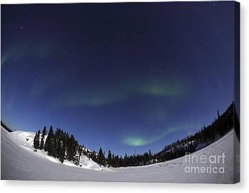 Aurora Over Vee Lake, Yellowknife Canvas Print by Yuichi Takasaka