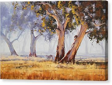 Australian Gums Canvas Print by Graham Gercken