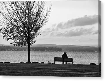 Autumn At Canandaigua Lake 2010 Canvas Print by Joseph Duba
