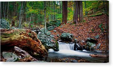 Autumn At The River Canvas Print by David Hahn