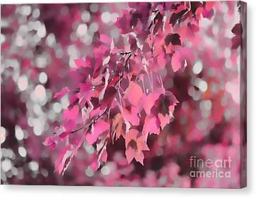 Autumn Blush Canvas Print by Jeff Breiman