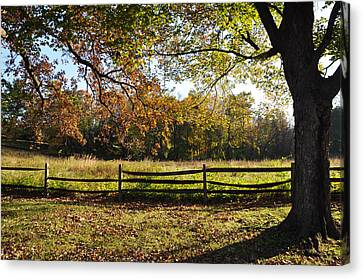 Autumn Field In Pennsylvania Canvas Print by Bill Cannon
