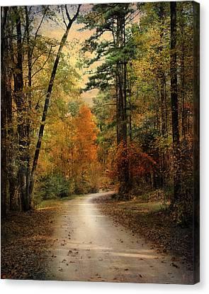 Autumn Forest 4 Canvas Print by Jai Johnson