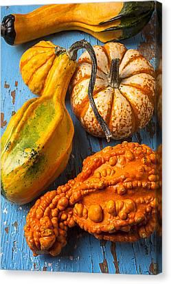 Autumn Gourds Still Life Canvas Print by Garry Gay