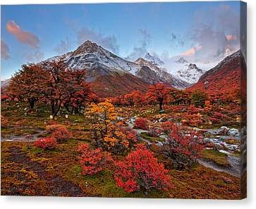 Autumn In Argentina Canvas Print by Helminadia
