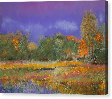 Autumn In Nisqually Canvas Print by David Patterson