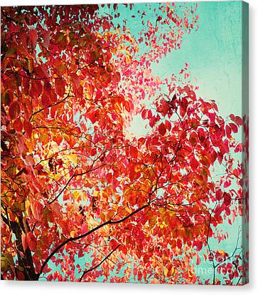 Autumn Canvas Print by Kim Fearheiley