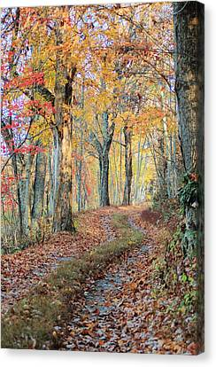 Autumn Lane Canvas Print by Heavens View Photography