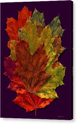 Autumn Leafs Digital Art Canvas Print by Mario Perez