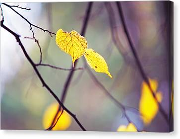 Autumn Nostalgie Canvas Print by Jenny Rainbow