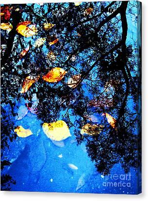 Autumn Reflection Canvas Print by Yury Bashkin