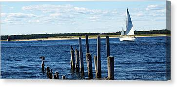 Autumn Sail Canvas Print by Mary Capriole