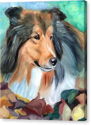 Autumn - Shetland Sheepdog Canvas Print by Lyn Cook