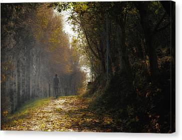 Autumn Way Canvas Print by Jaroslaw Oleksyk