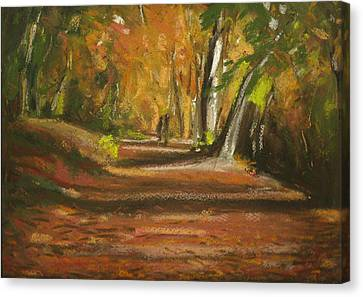 Autumn Woods 4 Canvas Print by Paul Mitchell