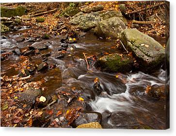 Autumns Creek Canvas Print by Karol Livote