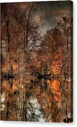 Autumn's End Canvas Print by Paul Ward