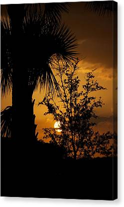Ave Maria Canvas Print by Joseph Yarbrough
