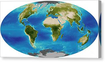 Average Plant Growth Of The Earth Canvas Print by Stocktrek Images