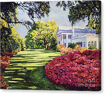 Azalea Spring Canvas Print by David Lloyd Glover
