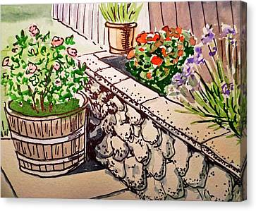 Backyard Sketchbook Project Down My Street Canvas Print by Irina Sztukowski