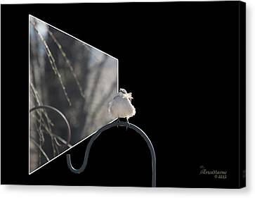Bad Feather Day Canvas Print by EricaMaxine  Price