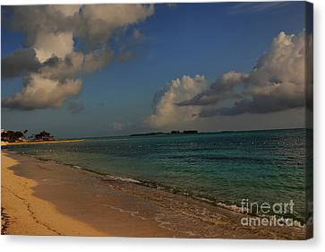 Bahama Ocean View Canvas Print by Nancie DeMellia