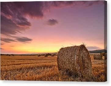 Bales At Twilight Canvas Print by Evgeni Dinev