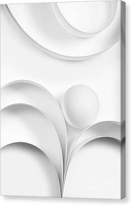 Ball And Curves 02 Canvas Print by Nailia Schwarz