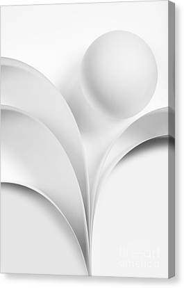 Ball And Curves 07 Canvas Print by Nailia Schwarz