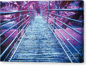 Bamboo Foot Bridge Canvas Print by Will and Deni McIntyre