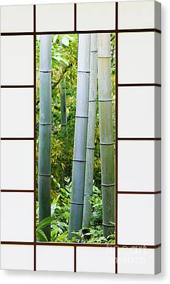 Bamboo Forest Through A Rice Paper Window Canvas Print by Jeremy Woodhouse