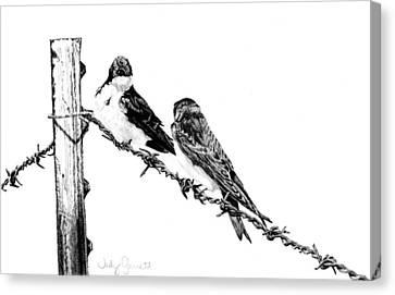 Barbed Wire Courtship Canvas Print by Judy Garrett