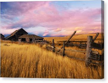 Barn And Field 2 Canvas Print by Peter Olsen