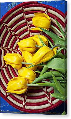 Basket Full Of Tulips Canvas Print by Garry Gay