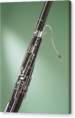 Bassoon Canvas Print by Datacraft Co Ltd