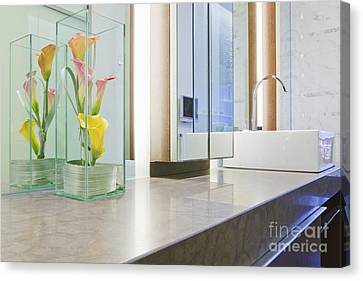 Bathroom Counter And Sink Canvas Print by Jeremy Woodhouse
