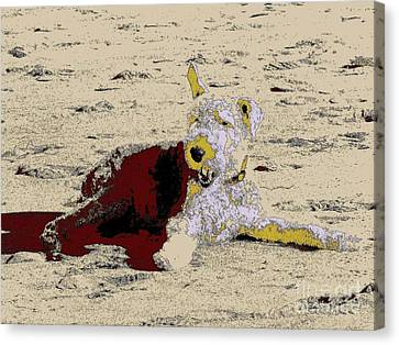 Beach Dog 7 Canvas Print by Nina Kaye