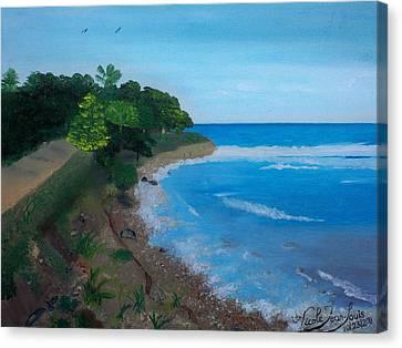 Beach Erosion Canvas Print by Nicole Jean-Louis