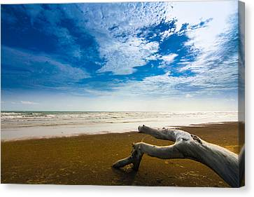 Beach Canvas Print by Nawarat Namphon