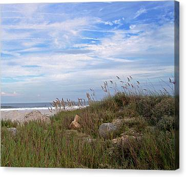 Beach Rocks Canvas Print by Patricia Taylor