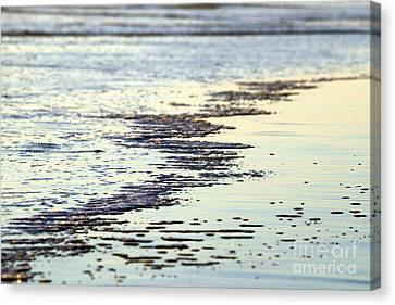 Beach Water Canvas Print by Henrik Lehnerer