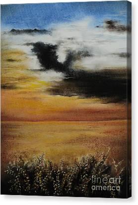 Beautiful Beginnings Canvas Print by Carla Carson