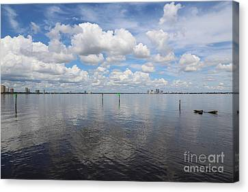 Beautiful Day In Tampa Canvas Print by Carol Groenen