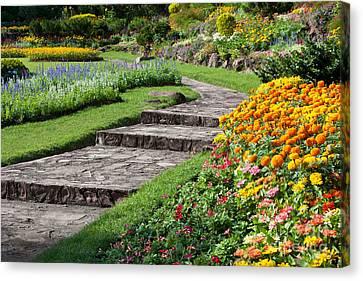 Beautiful Flowers In Park Canvas Print by Atiketta Sangasaeng