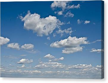 Beautiful Skies Canvas Print by Bill Cannon